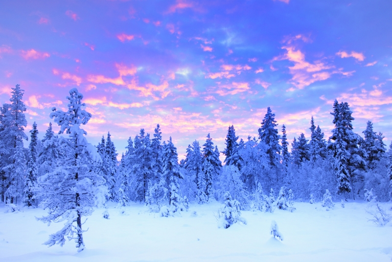 Swedish Lapland on a clear winter's day
